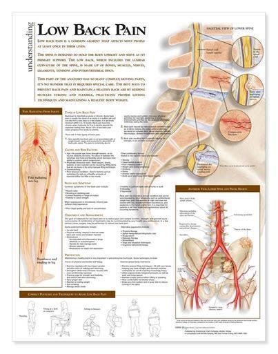 lowback pain